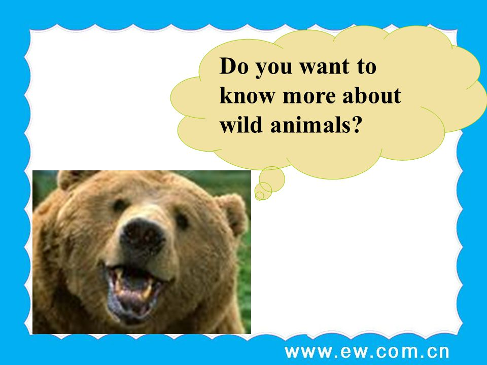 Do you want to know more about wild animals