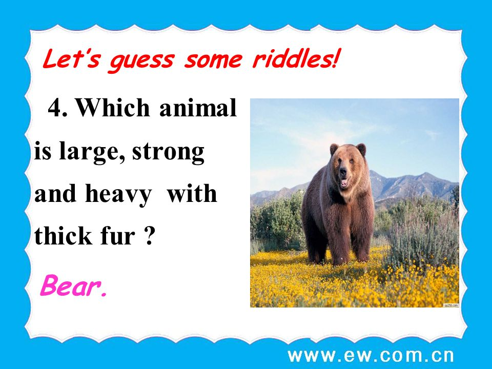 4. Which animal is large, strong and heavy with thick fur