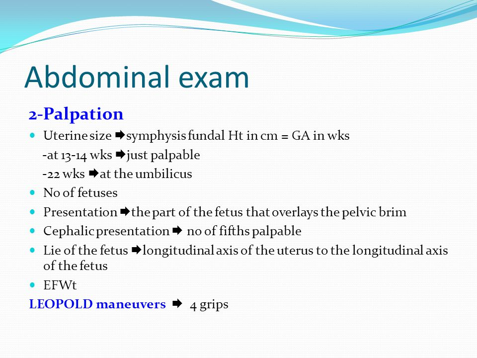 Abdominal exam 2-Palpation
