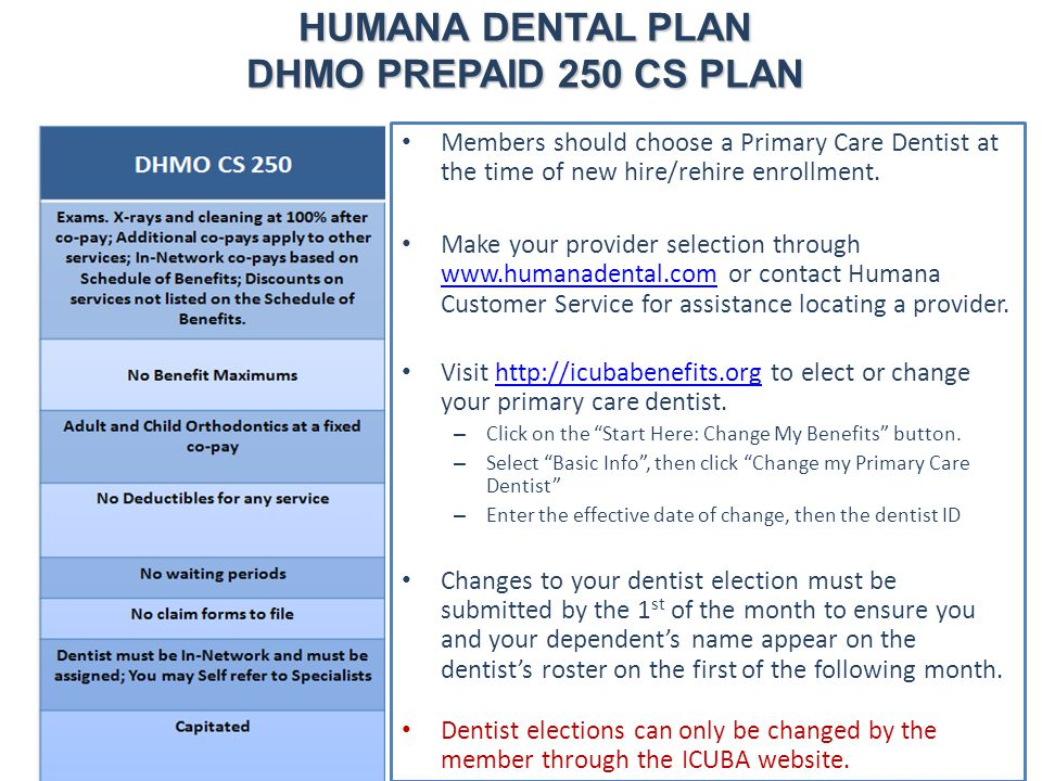 HUMANA DENTAL PLAN DHMO PREPAID 250 CS PLAN