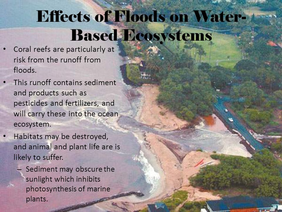 Effects of Floods on Water-Based Ecosystems