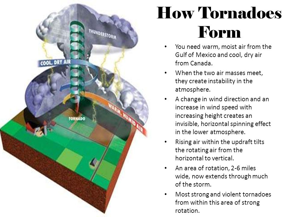 How Tornadoes Form You need warm, moist air from the Gulf of Mexico and cool, dry air from Canada.