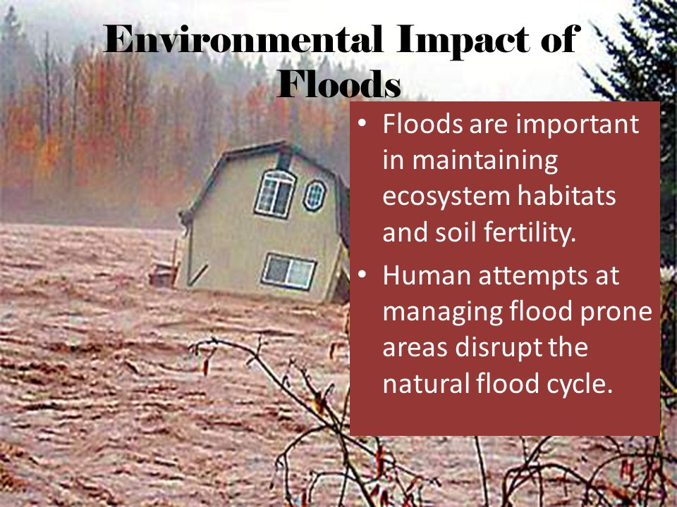 Environmental Impact of Floods