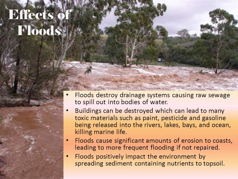 Effects of Floods Floods destroy drainage systems causing raw sewage to spill out into bodies of water.