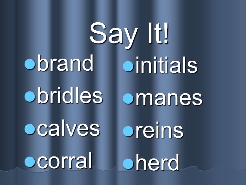 Say It! brand bridles calves corral initials manes reins herd