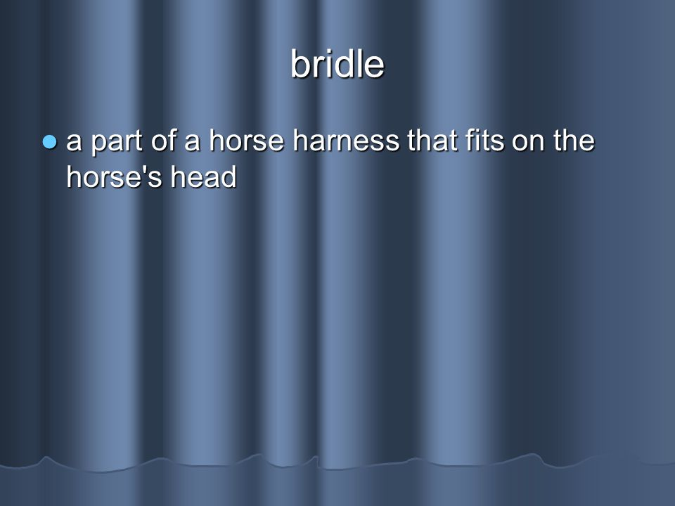 bridle a part of a horse harness that fits on the horse s head