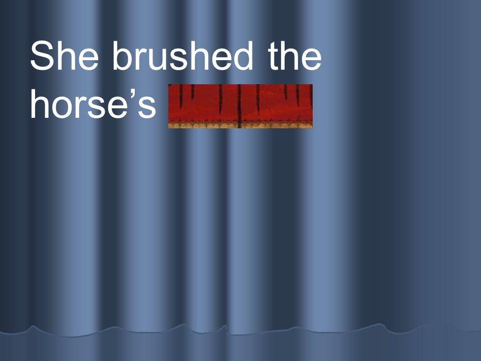 She brushed the horse's mane.