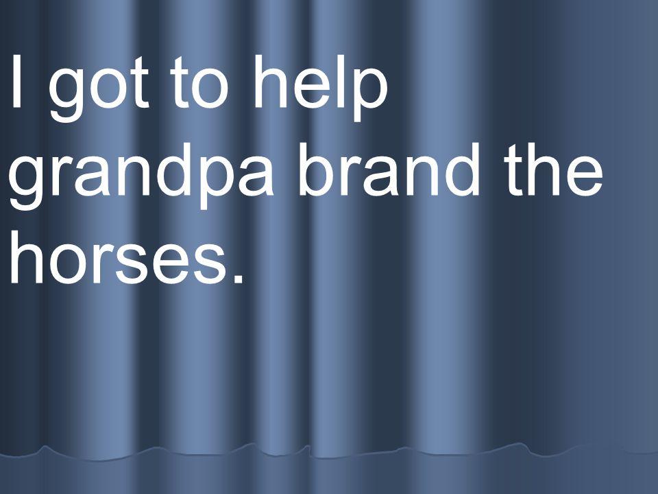 I got to help grandpa brand the horses.