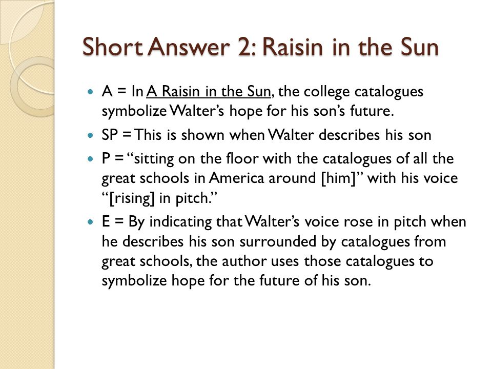 Short Answer 2: Raisin in the Sun