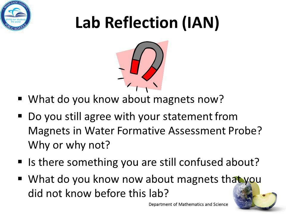 Lab Reflection (IAN) What do you know about magnets now