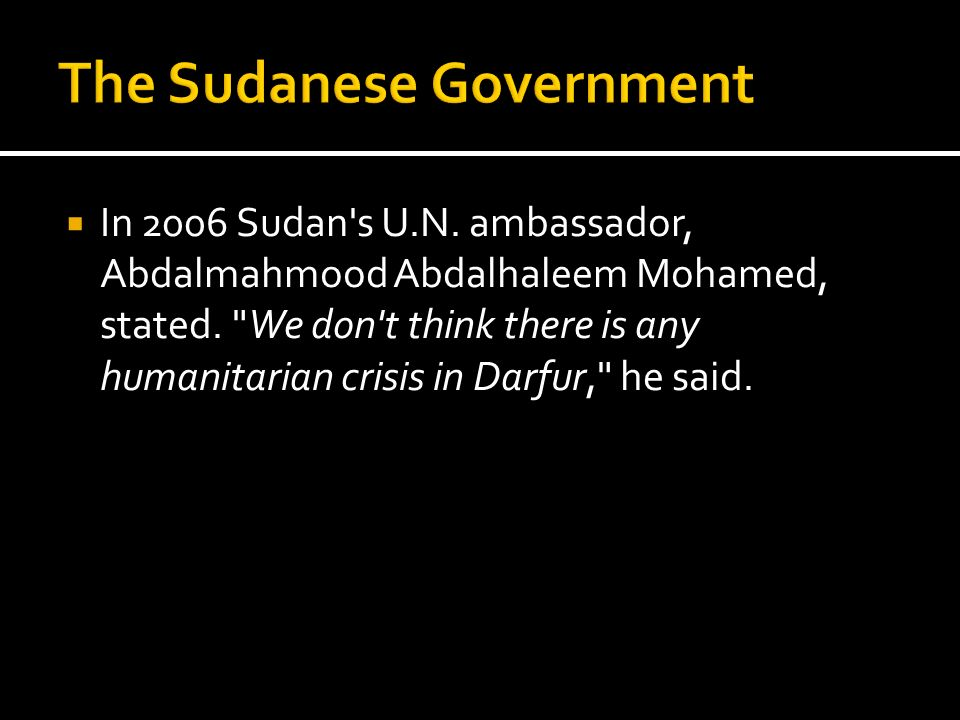 The Sudanese Government