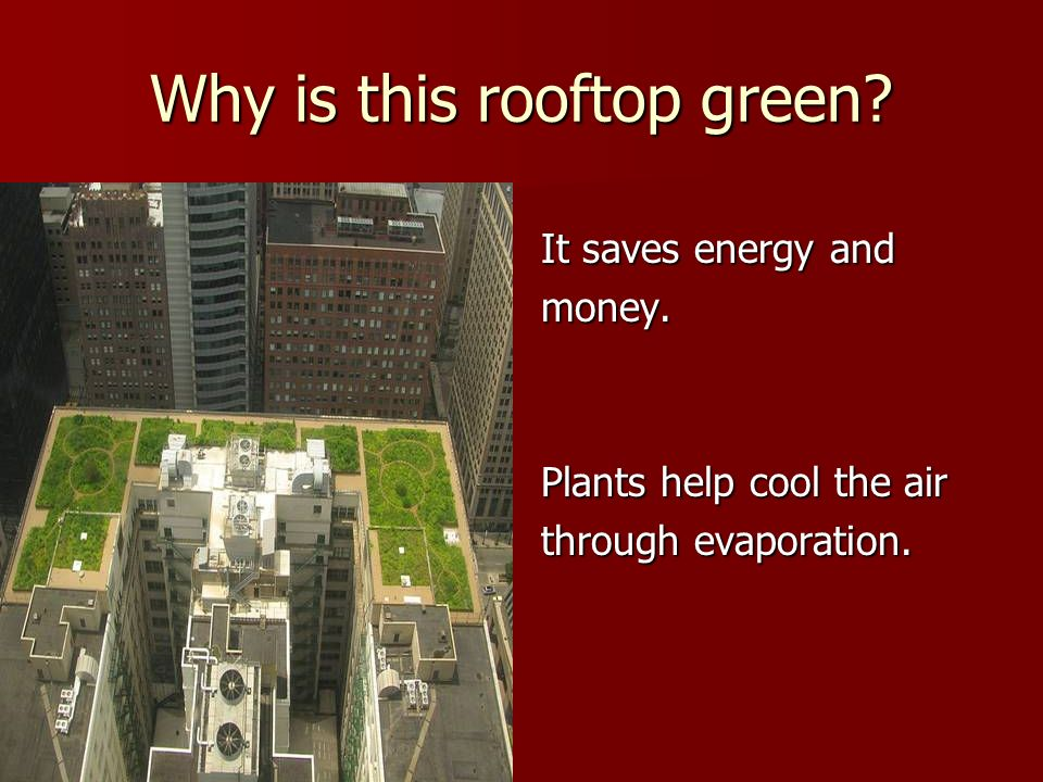 Why is this rooftop green
