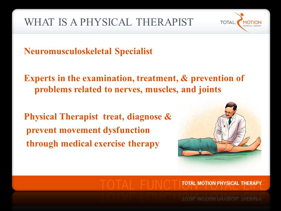 What is a Physical Therapist