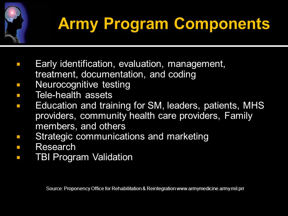 Army Program Components