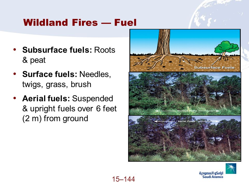 Wildland Fires — Fuel Subsurface fuels: Roots & peat