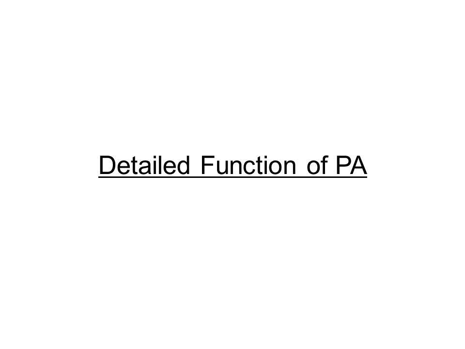 Detailed Function of PA