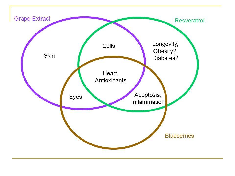 Longevity, Obesity , Diabetes Cells
