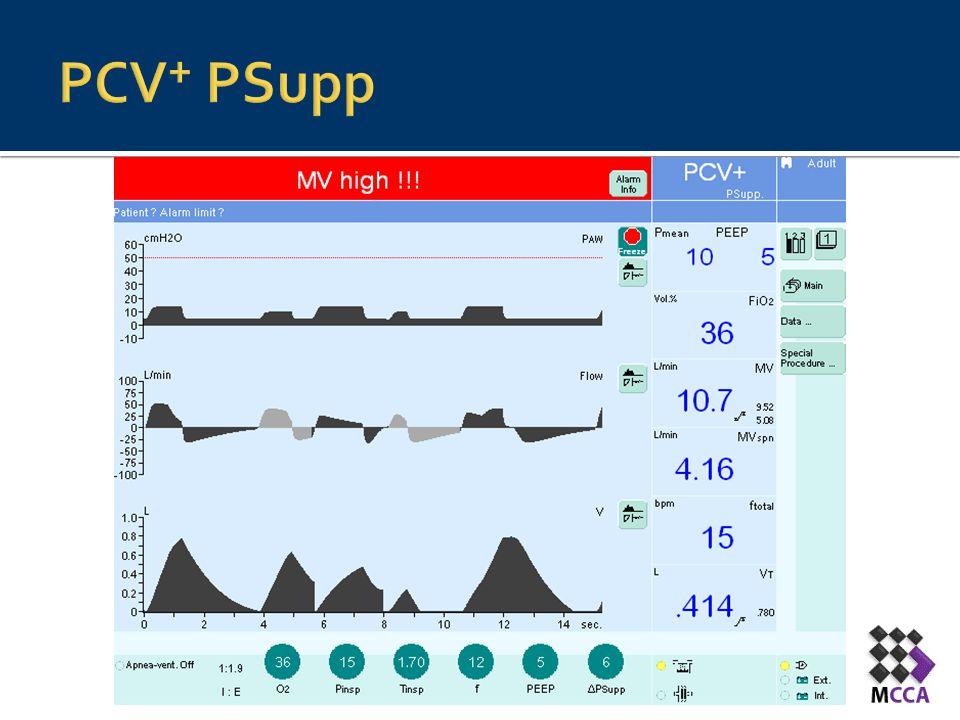 PCV+ PSupp