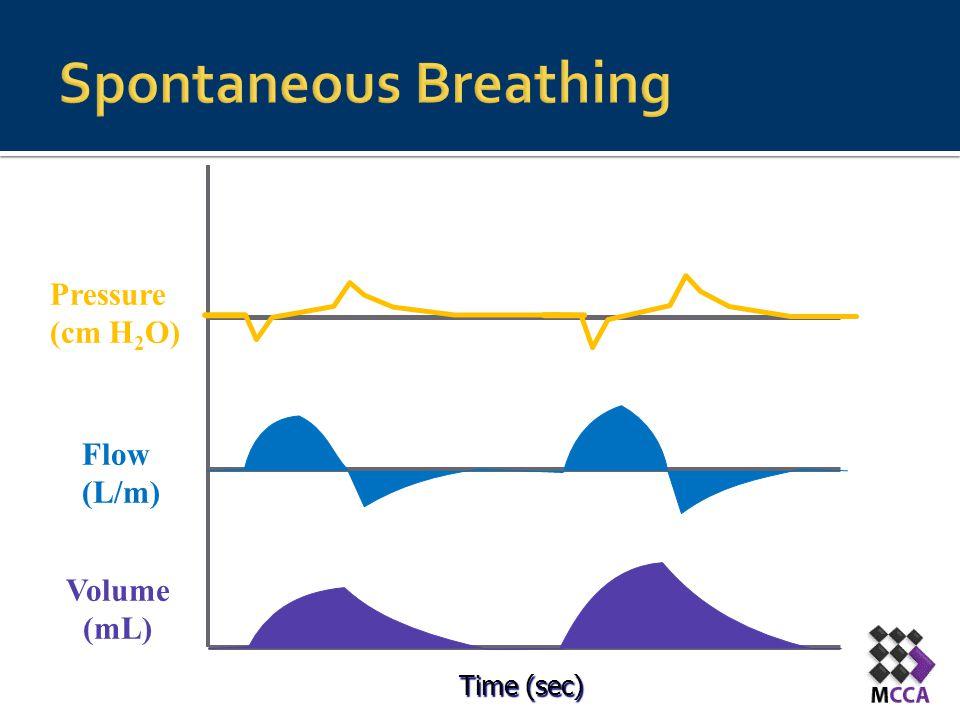 Spontaneous Breathing