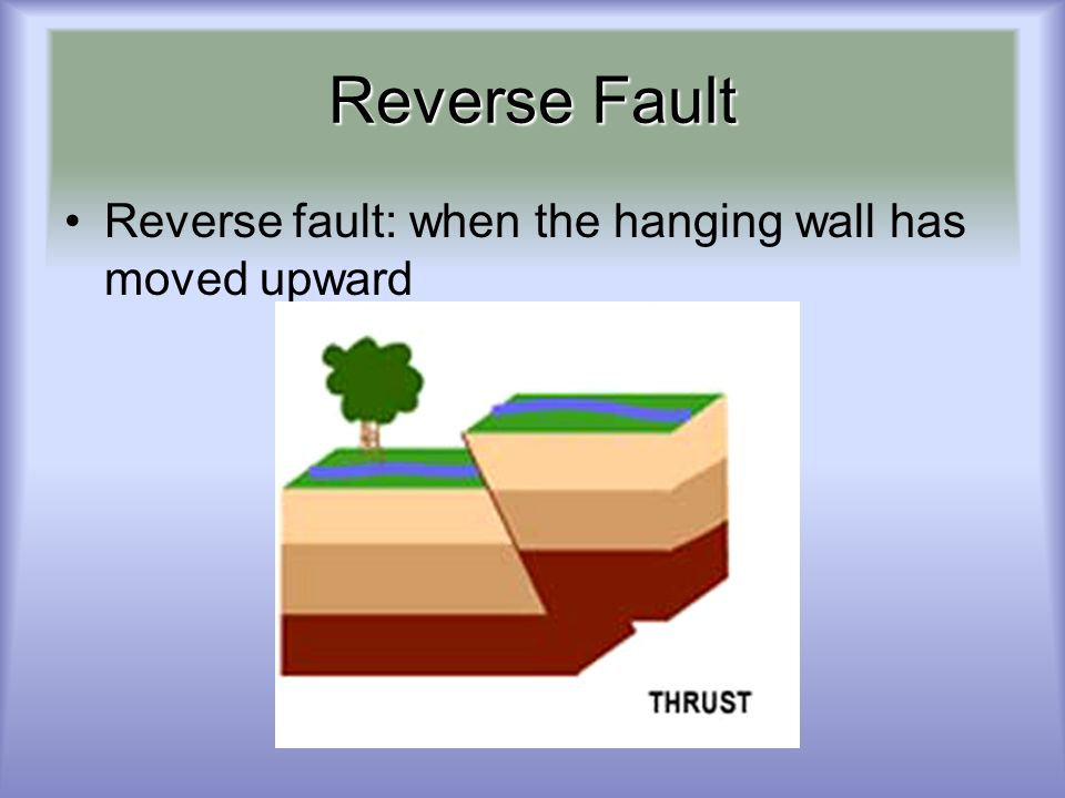 Reverse Fault Reverse fault: when the hanging wall has moved upward