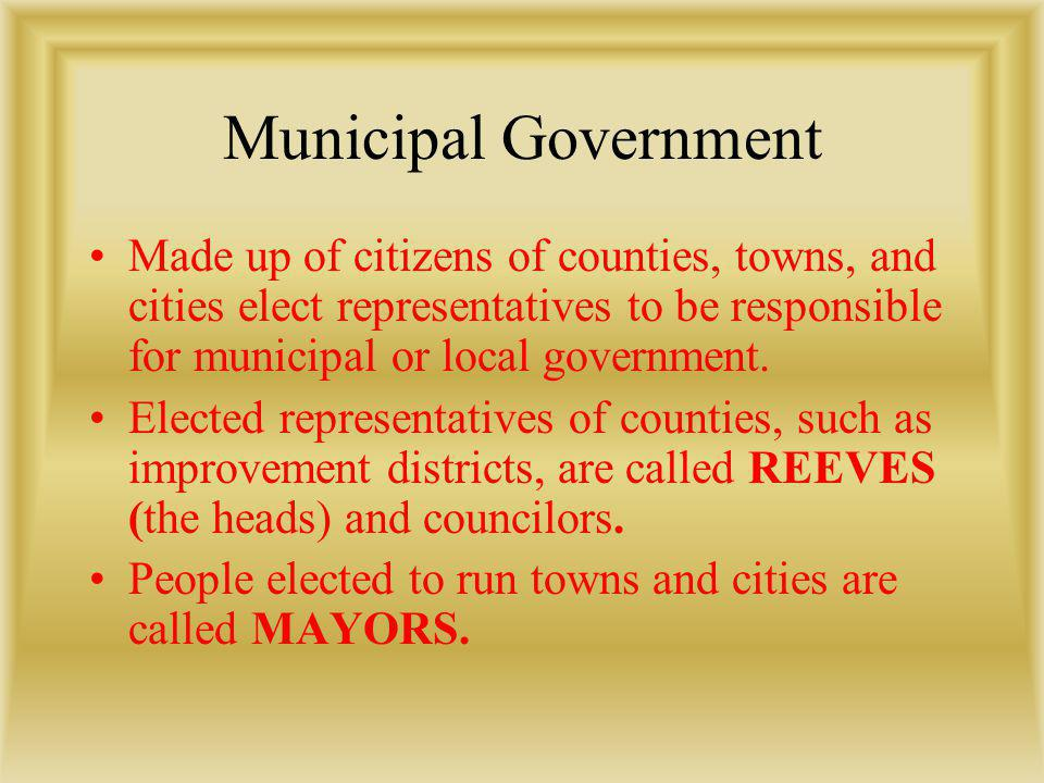 Municipal Government Made up of citizens of counties, towns, and cities elect representatives to be responsible for municipal or local government.