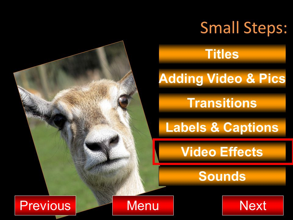 Small Steps: Titles Adding Video & Pics Transitions Labels & Captions
