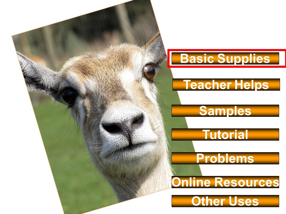 Basic Supplies Teacher Helps Samples Tutorial Problems Online Resources Other Uses