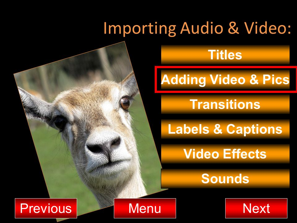 Importing Audio & Video: