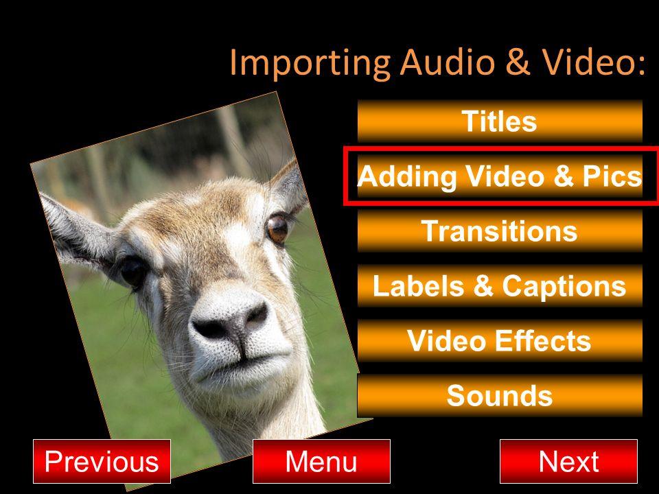 Importing Audio & Video: