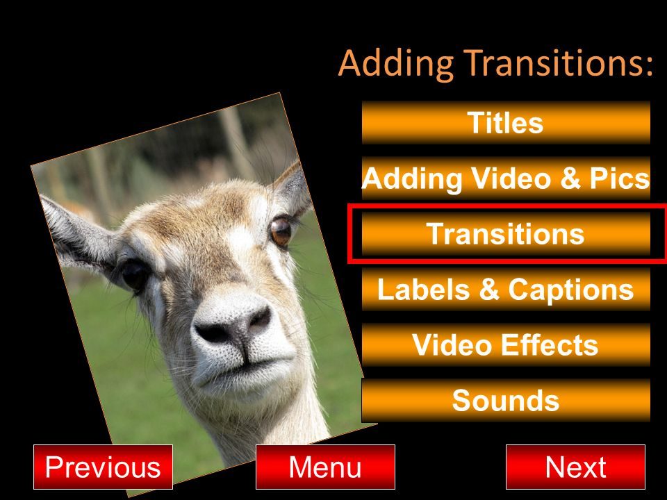 Adding Transitions: Titles Adding Video & Pics Transitions