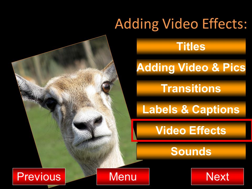 Adding Video Effects: Titles Adding Video & Pics Transitions