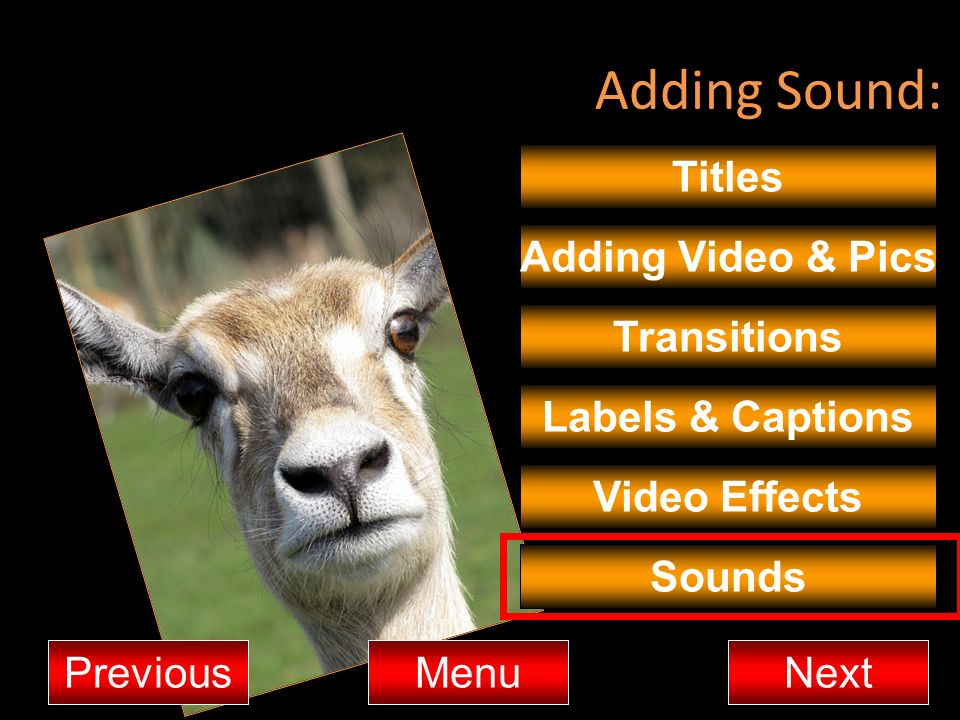 Adding Sound: Titles Adding Video & Pics Transitions Labels & Captions