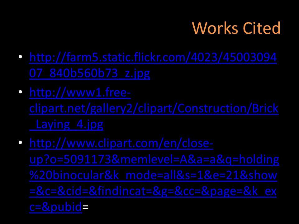 Works Cited http://farm5.static.flickr.com/4023/4500309407_840b560b73_z.jpg.
