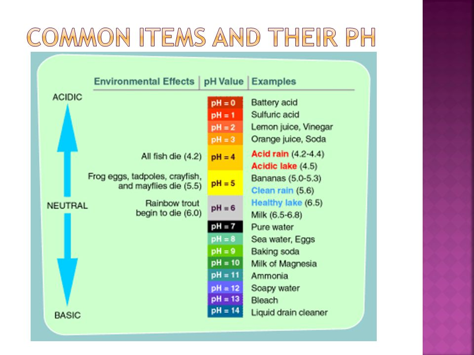 Common Items and their pH