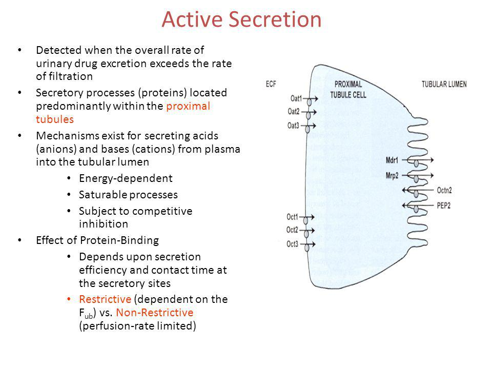 Active Secretion Detected when the overall rate of urinary drug excretion exceeds the rate of filtration.
