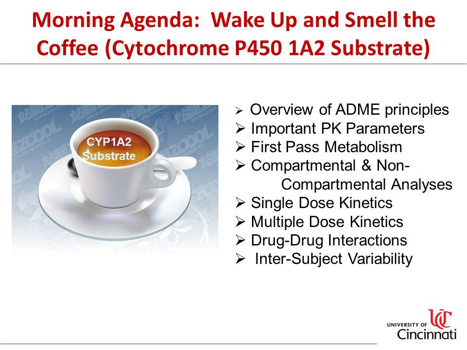 Morning Agenda: Wake Up and Smell the Coffee (Cytochrome P450 1A2 Substrate)