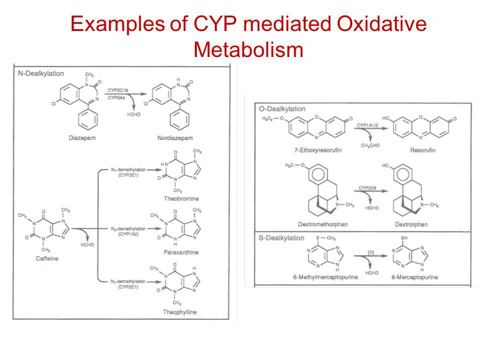Examples of CYP mediated Oxidative Metabolism