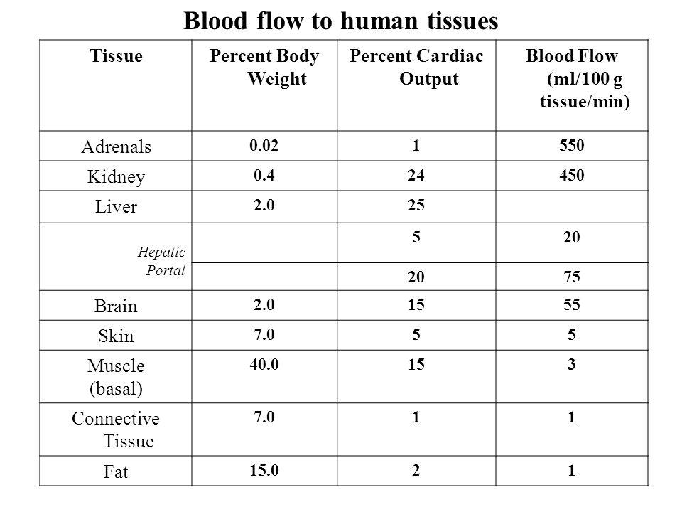 Percent Cardiac Output Blood Flow (ml/100 g tissue/min)
