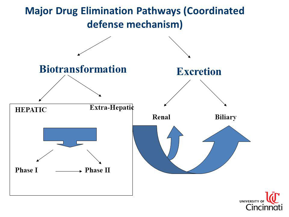Major Drug Elimination Pathways (Coordinated defense mechanism)