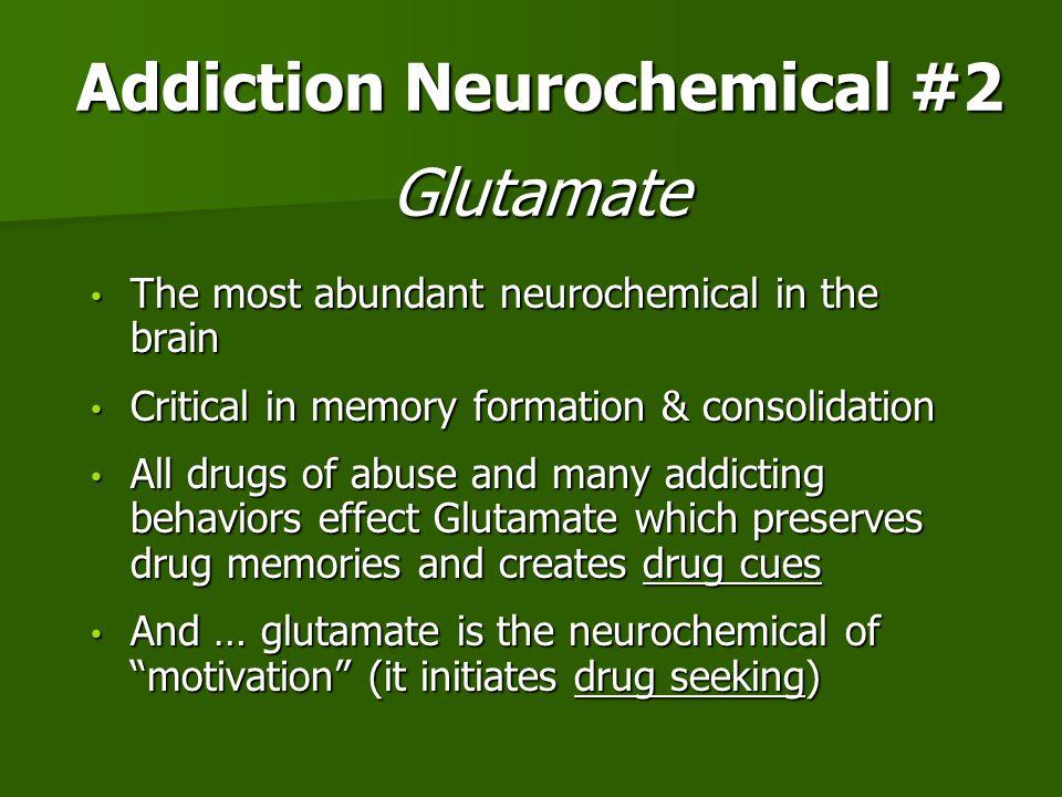 Addiction Neurochemical #2 Glutamate