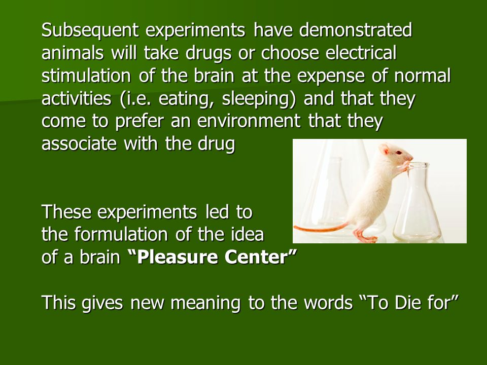 Subsequent experiments have demonstrated animals will take drugs or choose electrical stimulation of the brain at the expense of normal activities (i.e.