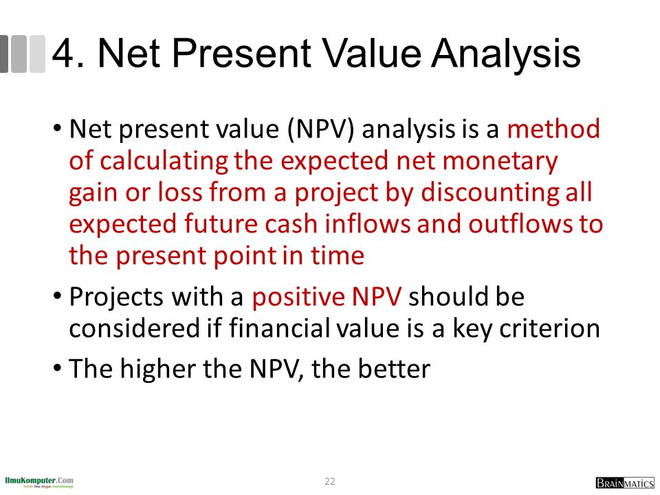 4. Net Present Value Analysis