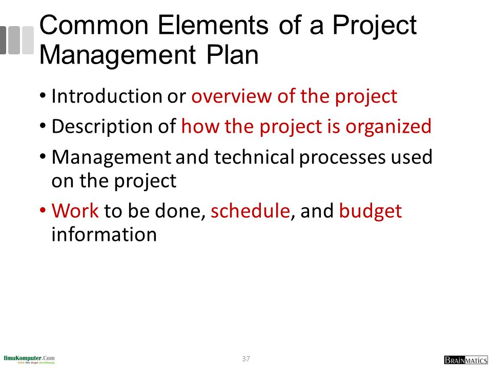 Common Elements of a Project Management Plan