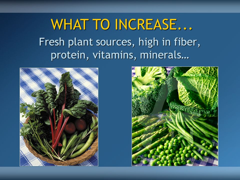 Fresh plant sources, high in fiber, protein, vitamins, minerals…