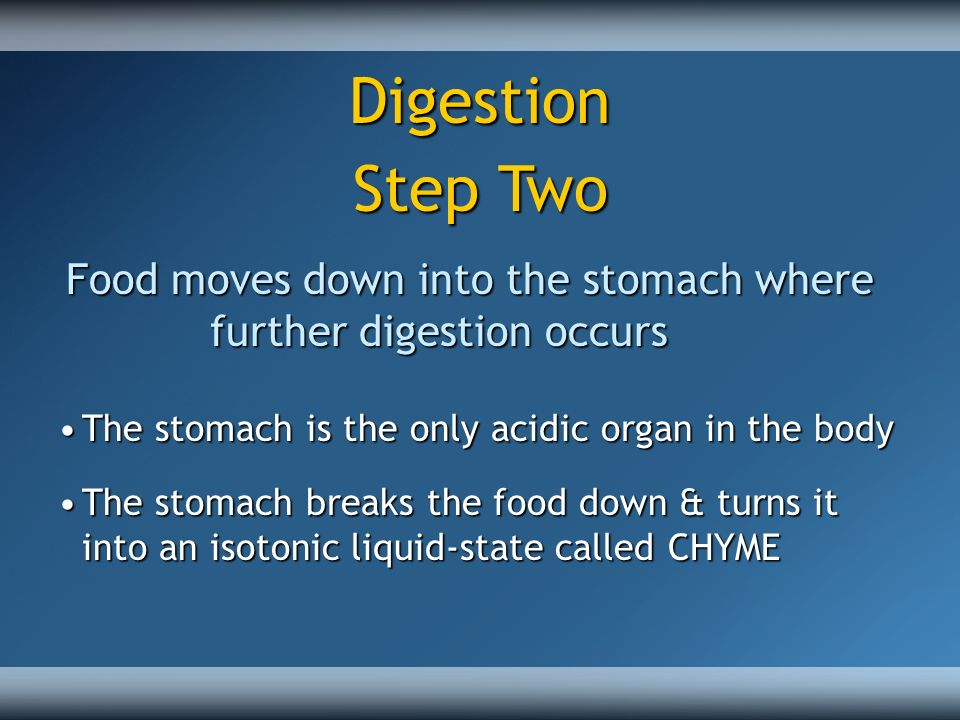 Digestion Step Two. Food moves down into the stomach where further digestion occurs. The stomach is the only acidic organ in the body.