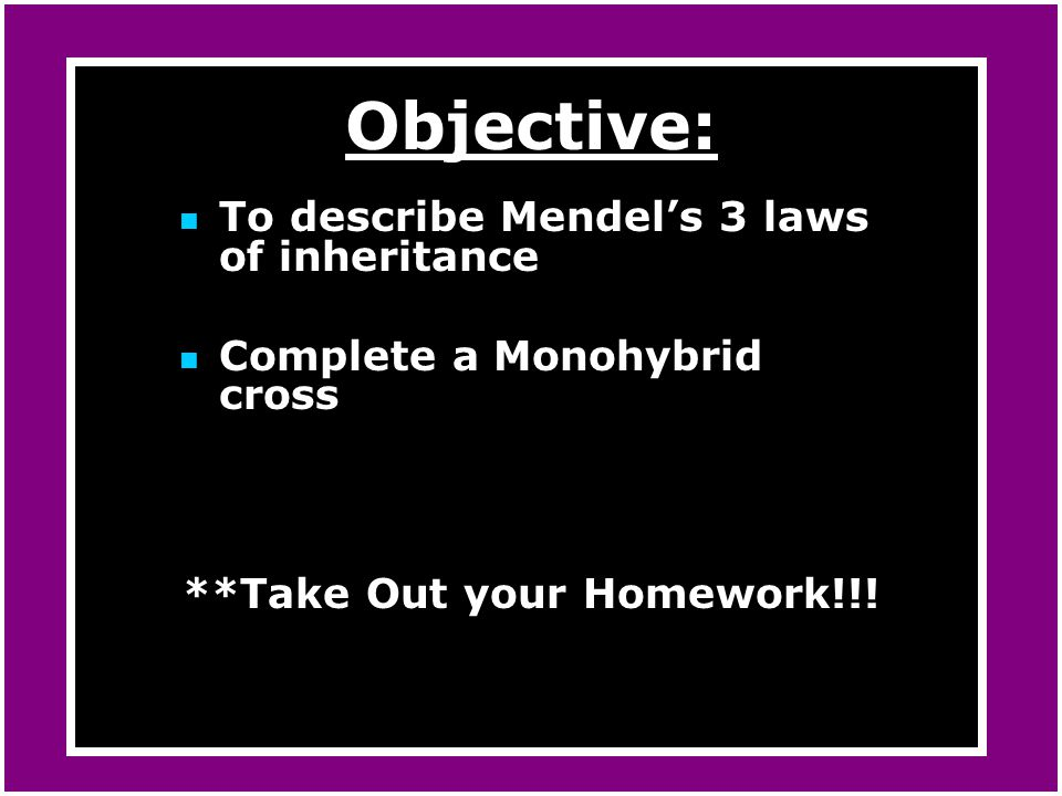 **Take Out your Homework!!!