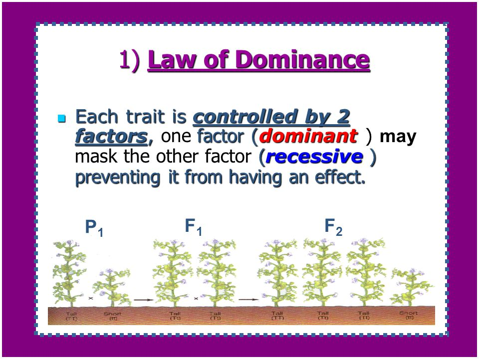 1) Law of Dominance