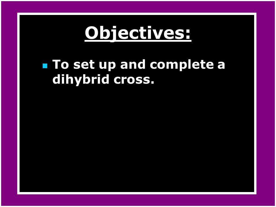 Objectives: To set up and complete a dihybrid cross.