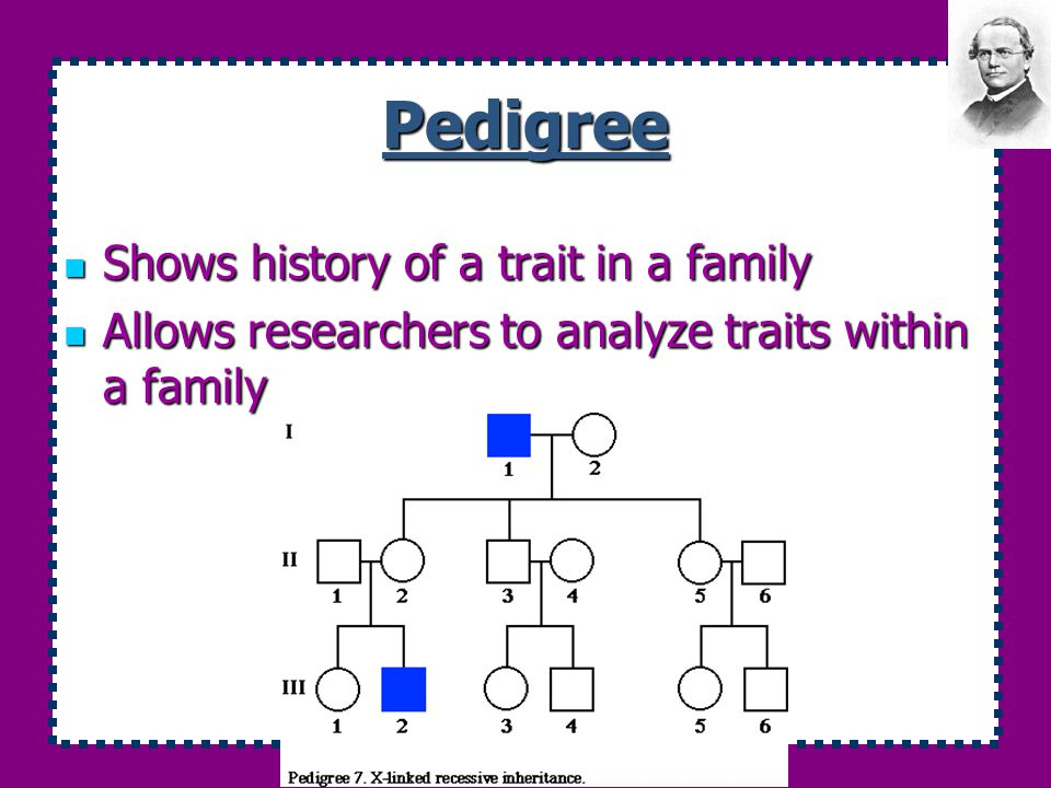 Pedigree Shows history of a trait in a family