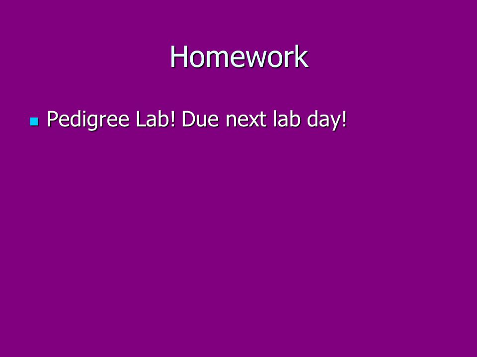 Homework Pedigree Lab! Due next lab day!